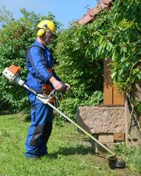 Aide domicile jardinage jouars pontchartrain yvelines 78 for Service a domicile jardinage